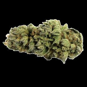 Gorilla glue#4 strain