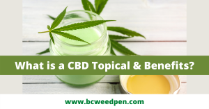 What is a CBD Topical Benefits