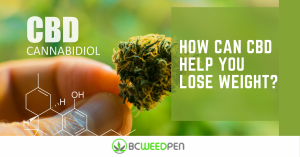 How can CBD help you lose weight_