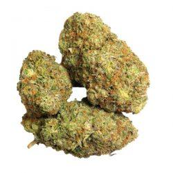 Buy wholesale bud online - Buy Weed strains online